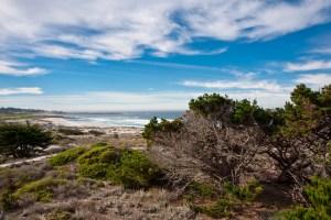 Asilomar-State-Beach3-HiRes