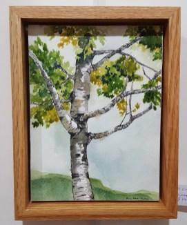 """Hartland Birch - 6""""x8"""" Original Watercolor"""