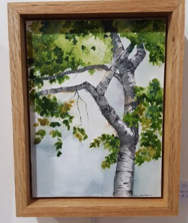 "Kennebunkport Birch - 6""x8"" Original Watercolor"
