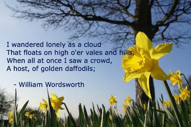 wordsworth-lonely-daffodils