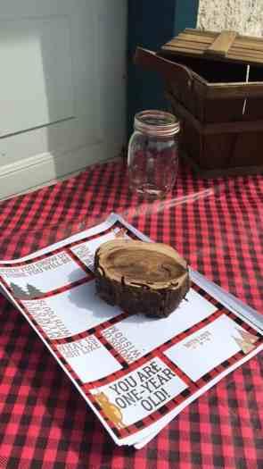 Lumberjack First Birthday- Time Capsule Printable