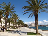 Split's Riva boardwalk, just outside the walls of Diocletian's Palace