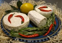display of French goat's cheese camembert, mini log and fresh French chèvre