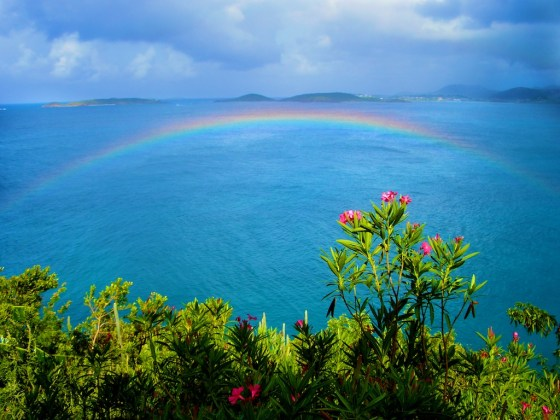 A rainbow over the coast off St. John. Copyright Amy Laughinghouse