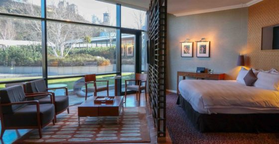 A suite overlooking a rooftop garden at Edinburgh's The Glasshouse