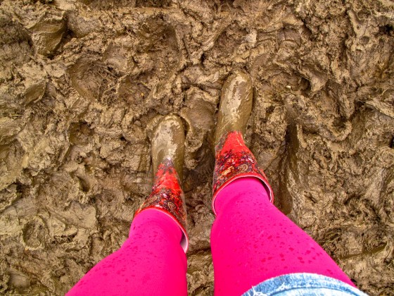 women's legs in pink tights wearing muddy wellies in mud