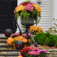 Pretty Pumpkins, Porches and Planters