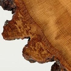 treecookiedetail11