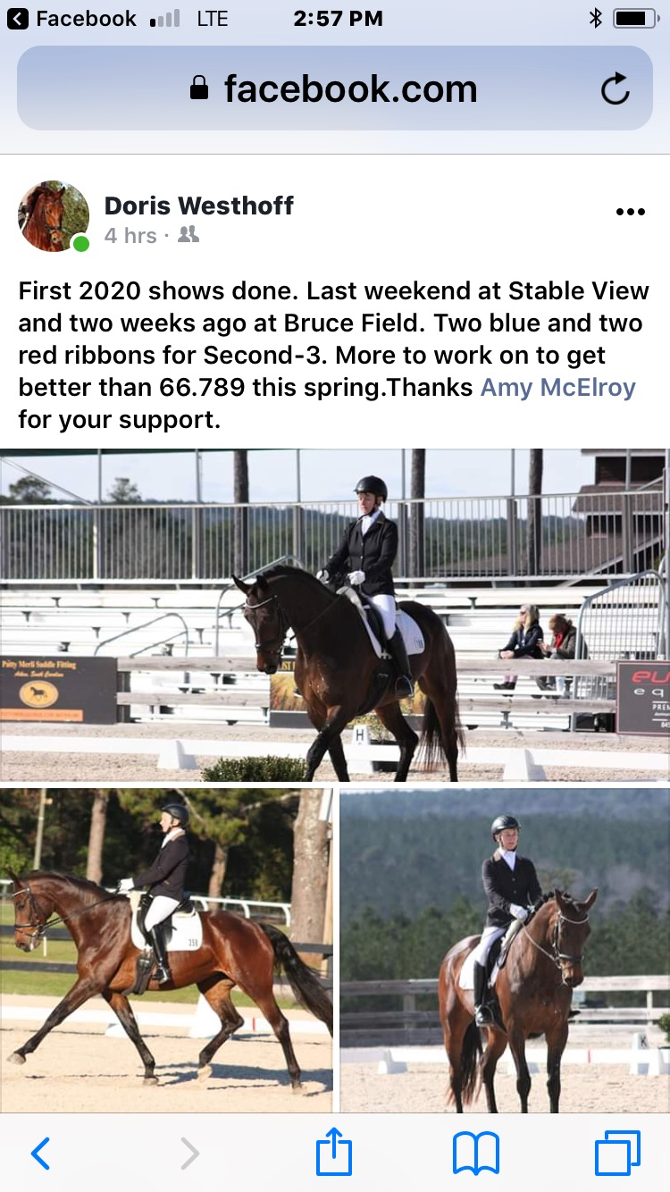 dressage photos from spring 2020