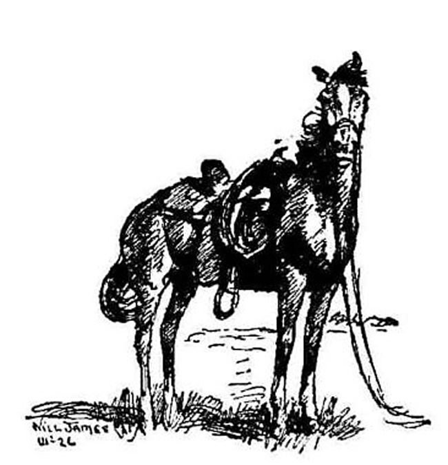 Newbery Review # 6 (Smoky the Cowhorse, James, 1927