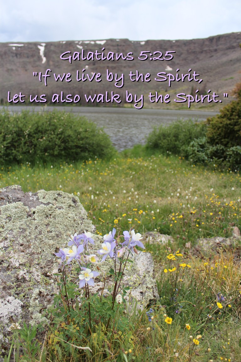 Live by the Spirit Galatians 5:25