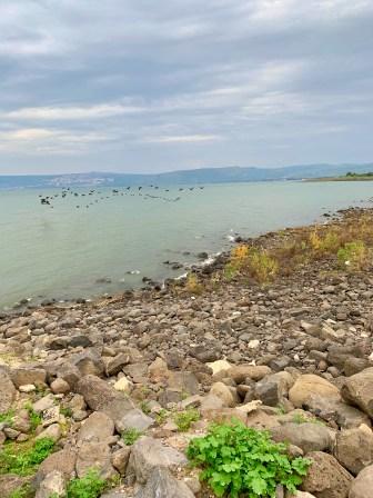 HL Day 3 - Capernaum-009