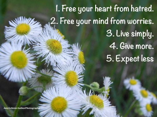5 Simple Rules.jpg
