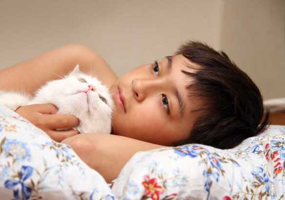 boy with white cat