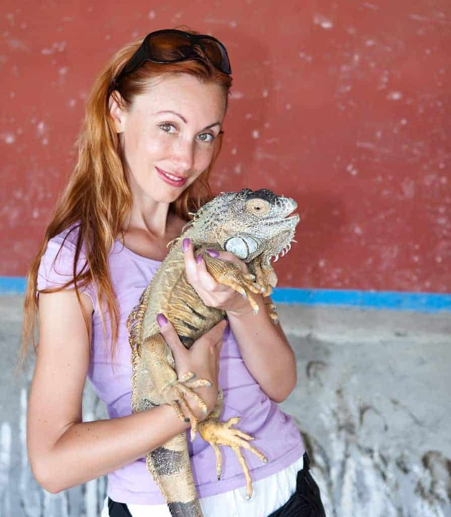 Portrait of the girl with the iguana