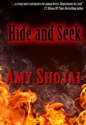 Hide_Seek(2)
