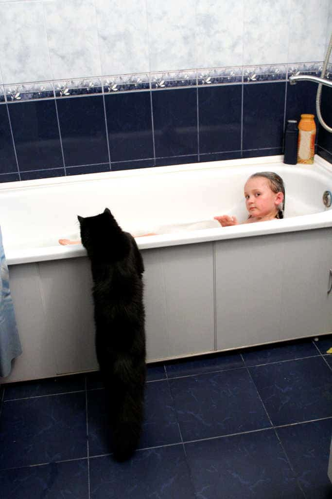 image of little girl taking a bath with curious black cat