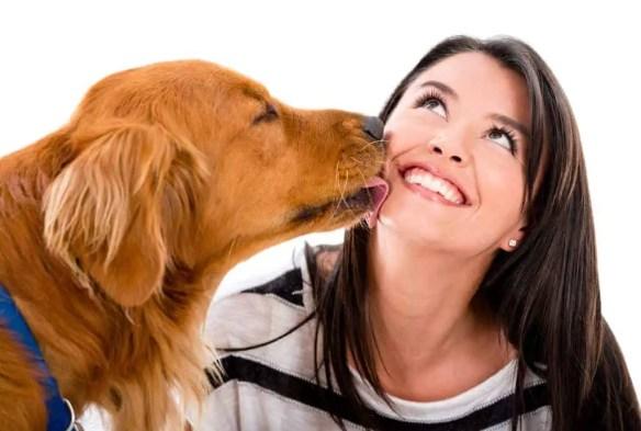 Valentine's doggy love