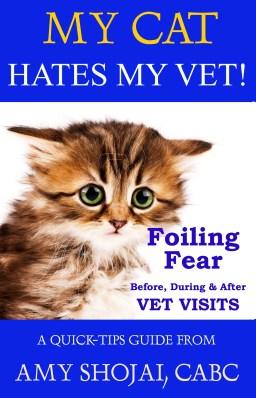 fear free cat tips