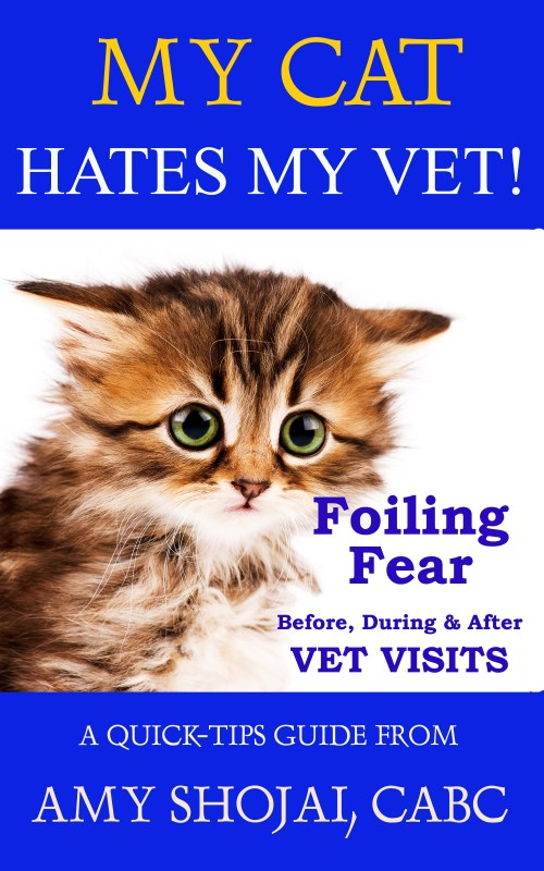 My Cat Hates My Vet: Foiling Fear Before, During & After Vet Visits