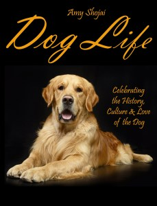 dog life cover