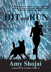 Hit And Run Book