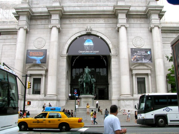Day 19 American Museum Of Natural History York Ny Amystravels2012