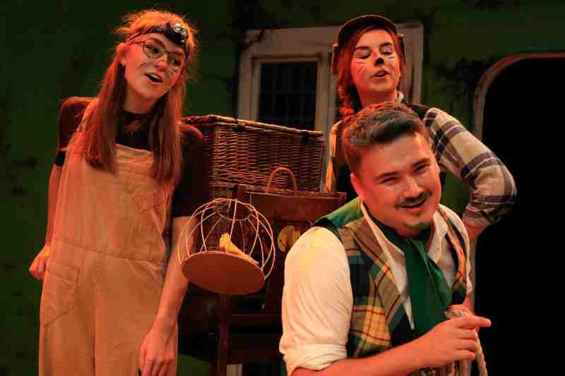 Wind in the Willows at Dovehouse Theatre