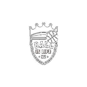 Ball Is Life pro bono website development.