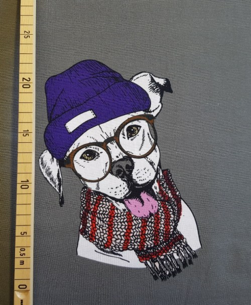 Jersey Panel Hipster Doggy