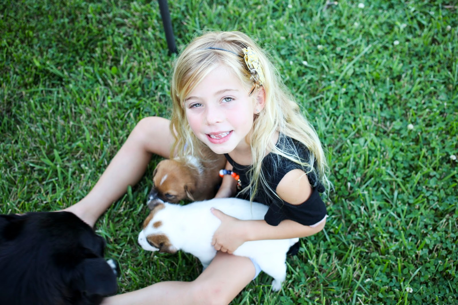 Blonde girl with puppies in kentucky