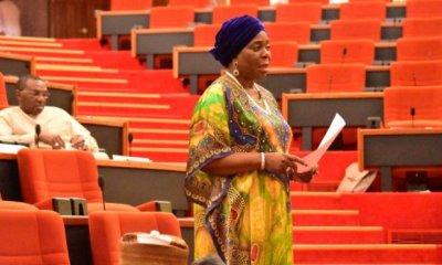 Electoral Process In Ekiti Was Daylight Robbery – Senator Olujimi