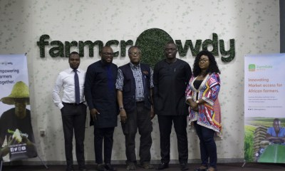 Farmcrowdy Group, owners of Nigeria's first digital agriculture platform Farmcrowdy and the newly launched Farmgate Africa, a leading online agro-commodity aggregator, have today announced a strategic partnership with Best Foods Livestock and Poultry Limited one of Nigeria's most respected agribusiness companies with more than 16 years of operations and a focus on the processing and marketing of livestock produce.