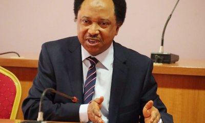 Former senator Shehu Sani has reacted to the vice president Yomi Osinbajo's worry over having a sleepless night due to the increasing rate of poverty in Nigeria.
