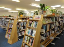 Adult library