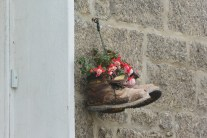 Newlyn hanging basket