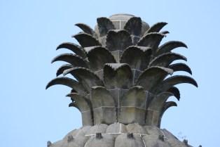 Dunmore Pineapple