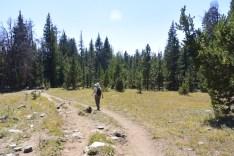 Pole Creek Trail