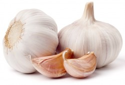 garlic testosterone