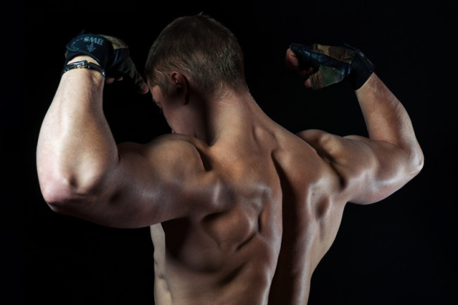 strong_shoulders-muscular-back-hgh