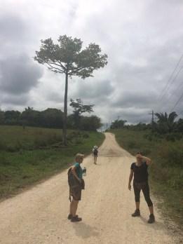 road to Lubaantun