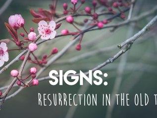 Signs: Mar 12 – Apr 09, 2017