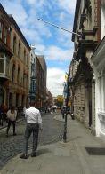 Dublin Bloom Temple Bar