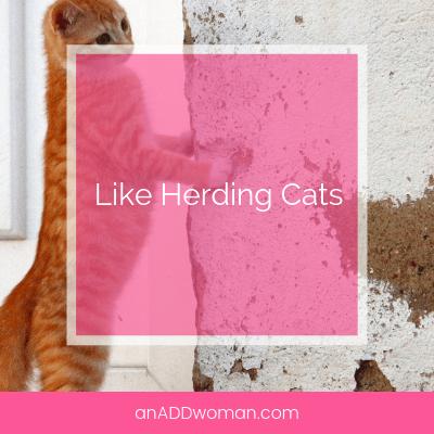 Like Herding Cats
