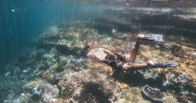 A Complete Guide to Snorkeling at Komodo National Park