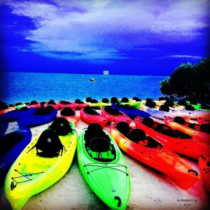 Kayaks lined up for the bioluminescent kayak tour