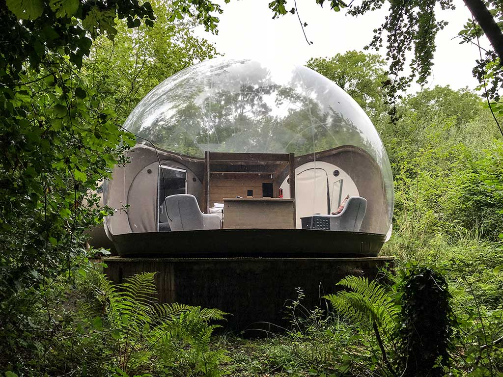 Forest Bubble Dome