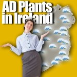 ad in Ireland plans meme