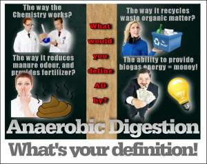 Define Anaerobic Digestion - Meme