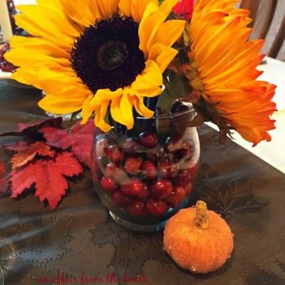 How to Make an Easy Cranberry Centerpiece